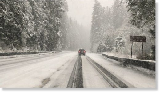 Snow falls along Stevens Pass on Oct. 8, 2019